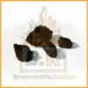 Steinkohle Nuss 2 (20 bis 40mm) 4 Stück