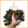 Steinkohle Nuss 2 (20 bis 40mm) handvoll