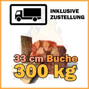 Brennholz 33 cm Kaminholz 500 kg