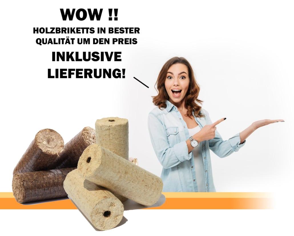 Holzbriketts in bester Qualität um den Preis inklusive Lieferung